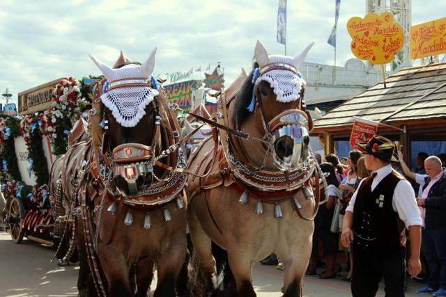 Einzug mit Pferden